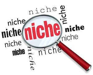 niche find and keep, online business